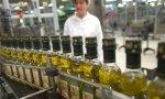 Nadie quiere poner dinero nuevo en el sector estratégico del aceite de oliva español.