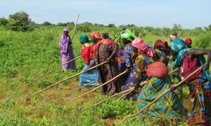 CE Chad crisis alimentaria caritas internationalis 2