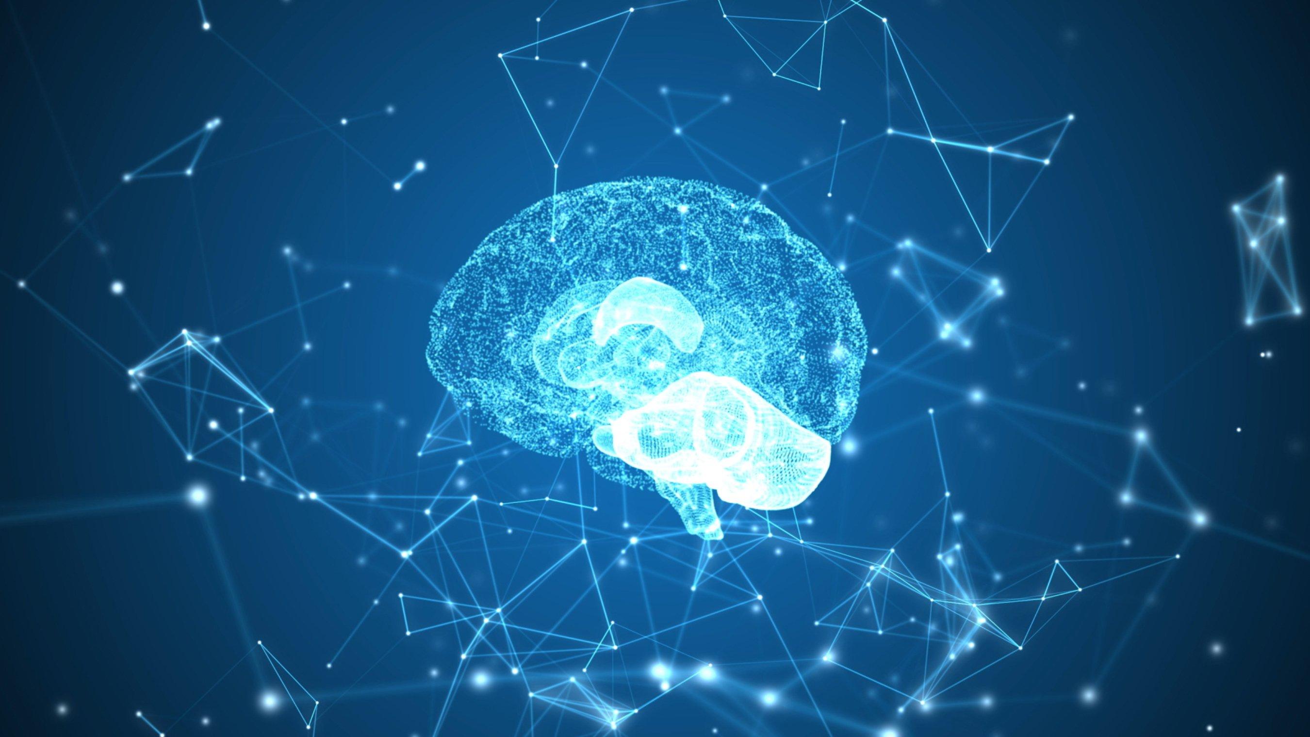 La neurociencia se empeña en que el aparato neurológico y el cerebro constituyen el alma de la persona
