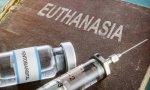 Aborto y eutanasia, vidas que molestan
