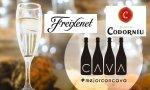 La centenaria historia de la denominación de origen cava peligra por los nuevos dueños de Freixenet y Codorníu