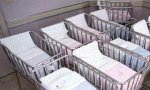 El número de nacimientos continúa en caída libre