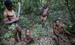 ¿Salvar la tierra matando gente? La OCDE investiga a WWF por financiar patrullas antifurtivos que torturan y asesinan a pigmeos