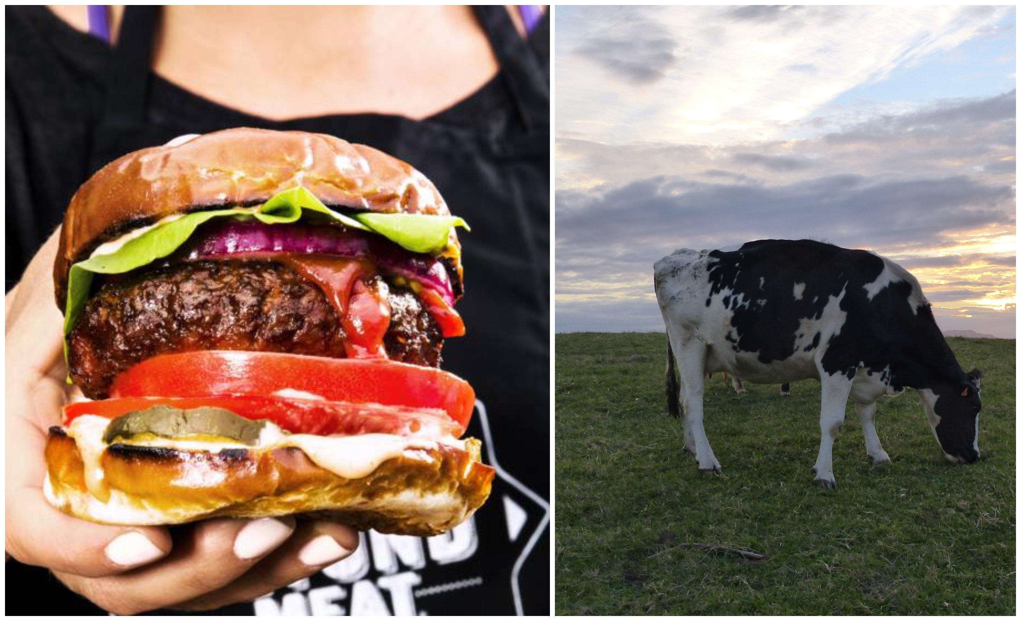 Hamburguesa vegetariana frente a carne de toda la vida