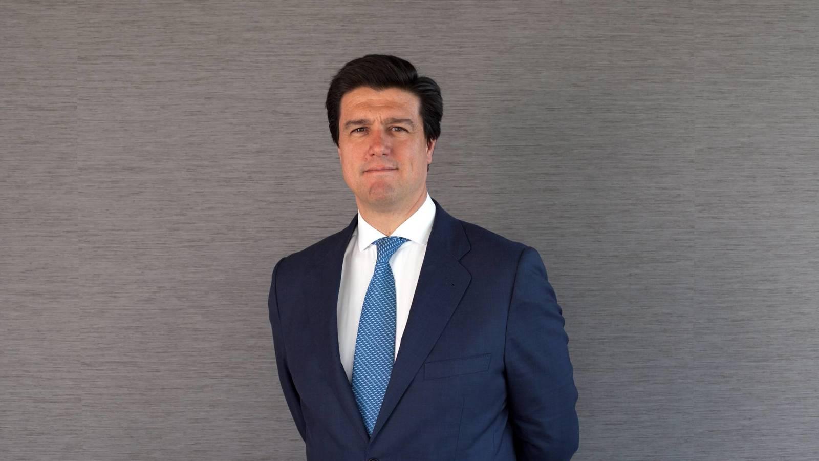 El consejero delegado de Merlin Properties, Ismael Clemente