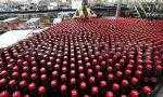 Coca-Cola oculta sus vergüenzas: Barcelona y Valencia intentan suplir la producción de la cerrada planta de Fuenlabrada