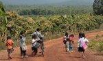 Más de 263 millones de niños y jóvenes no pueden ir a la escuela, pese a que toda persona tiene derecho a la educación