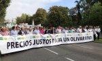 El sector olivarero español se manifiesta en Madrid para pedir precios justos