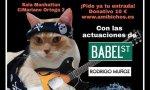Concierto solidario por el gatito Jaimie