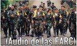 Vídeo educación de los niños y las FARC