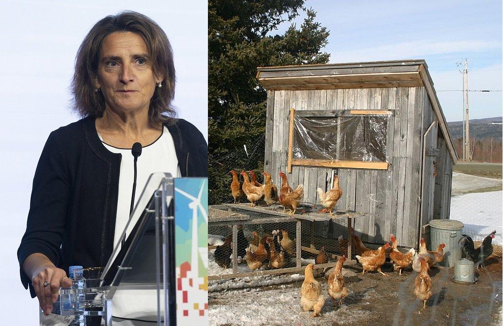 Ribera, nueva vicepresidenta de Transición Ecológica y... Reto Demográfico (¡ojito!)