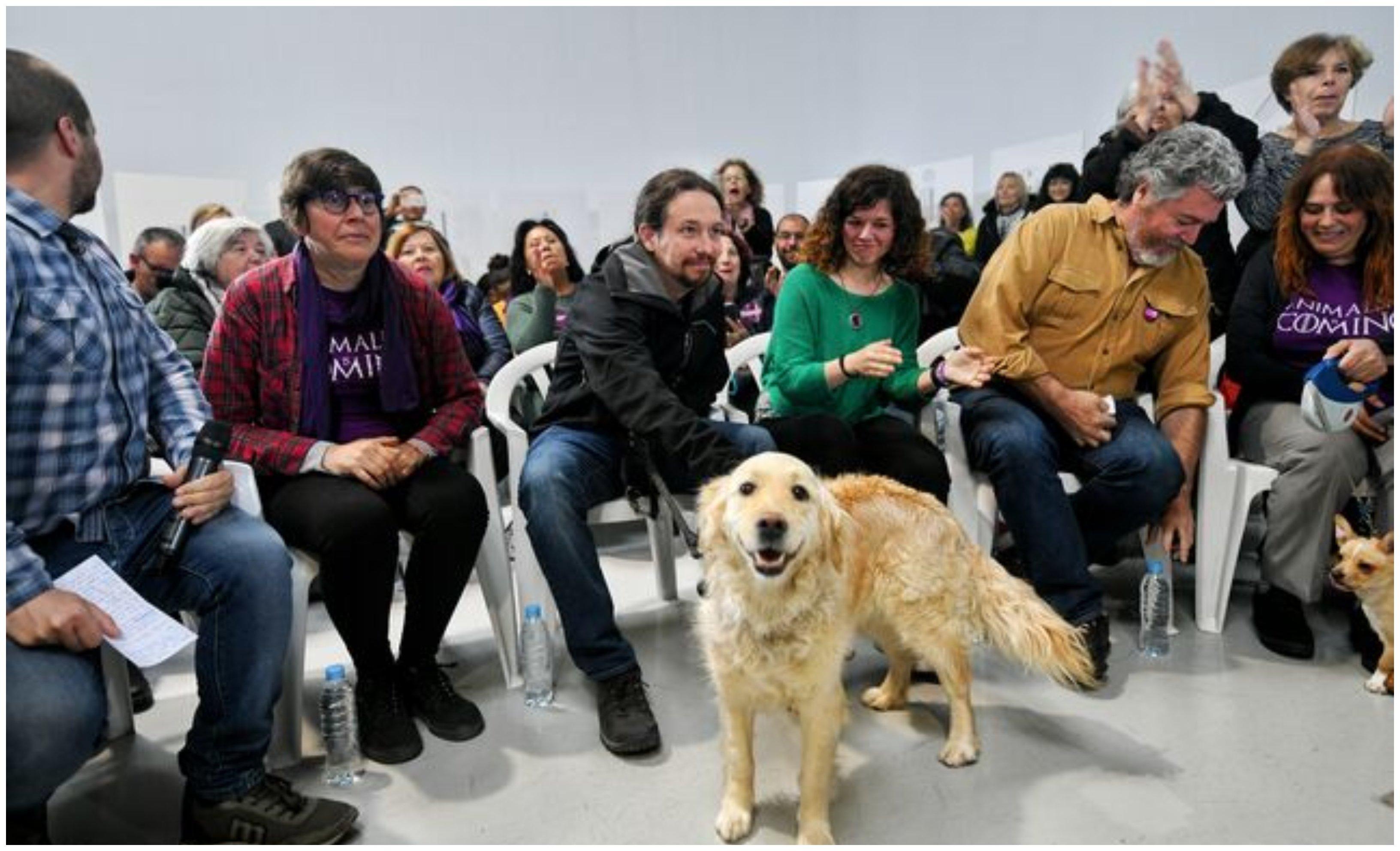 Pablo Iglesias prohibirá embargar a los perros