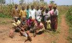 Burkina Faso. Ante los ensayos de las multinacionales farmacéuticas, la Iglesia explicará a las mujeres la realidad del aborto químico