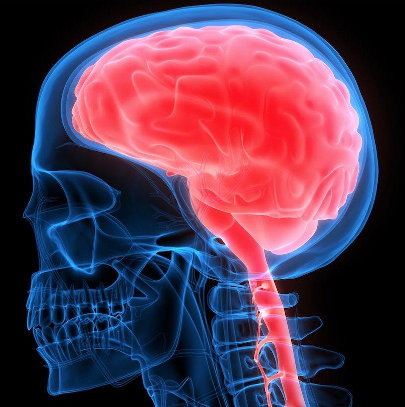 En España, la encefalitis más frecuente es la de aparición esporádica y es debida al herpes simple, herpes zoster o al enterovirus