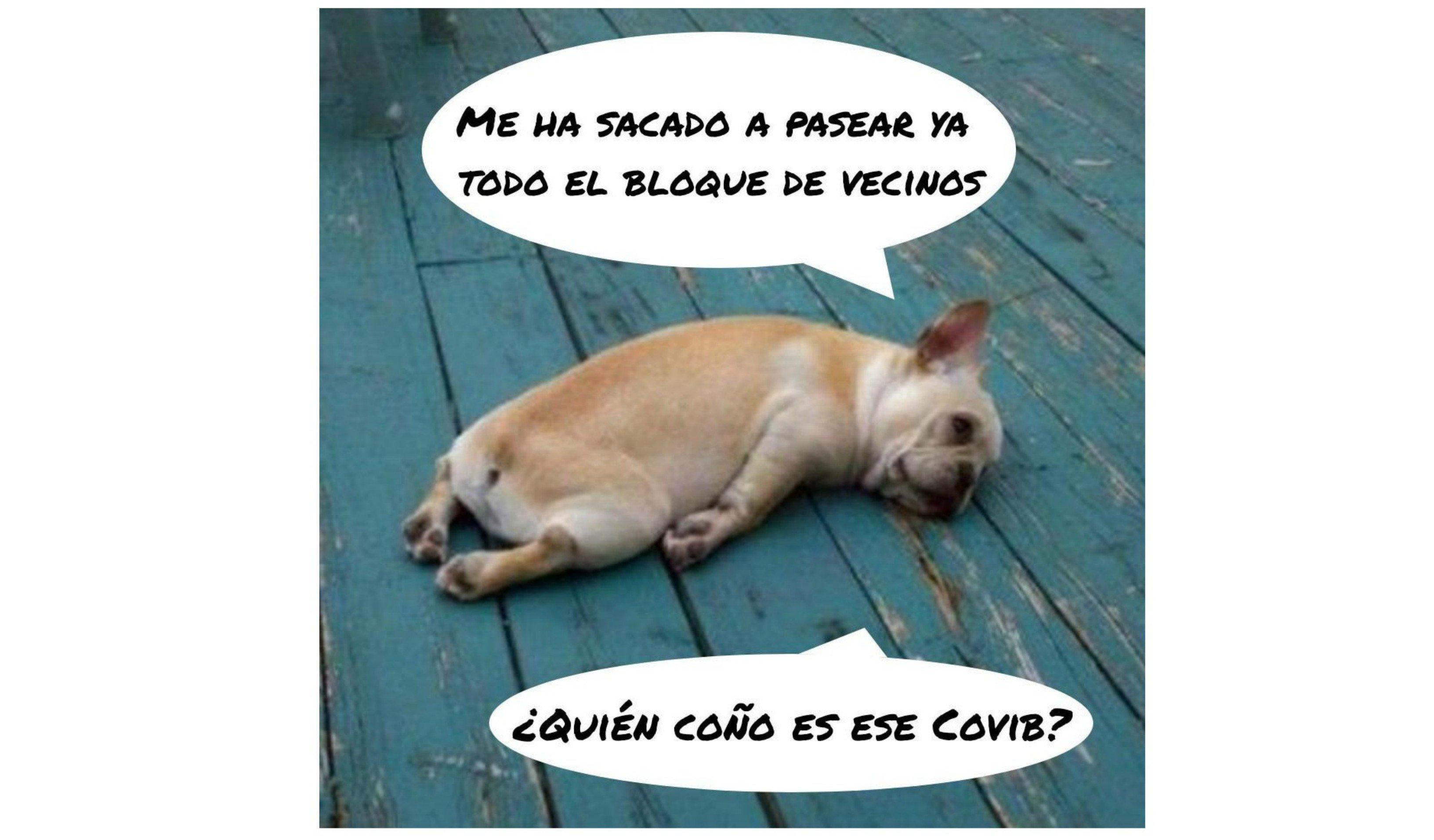Coronavirus. Cada hogar español se ha convertido en una prisión