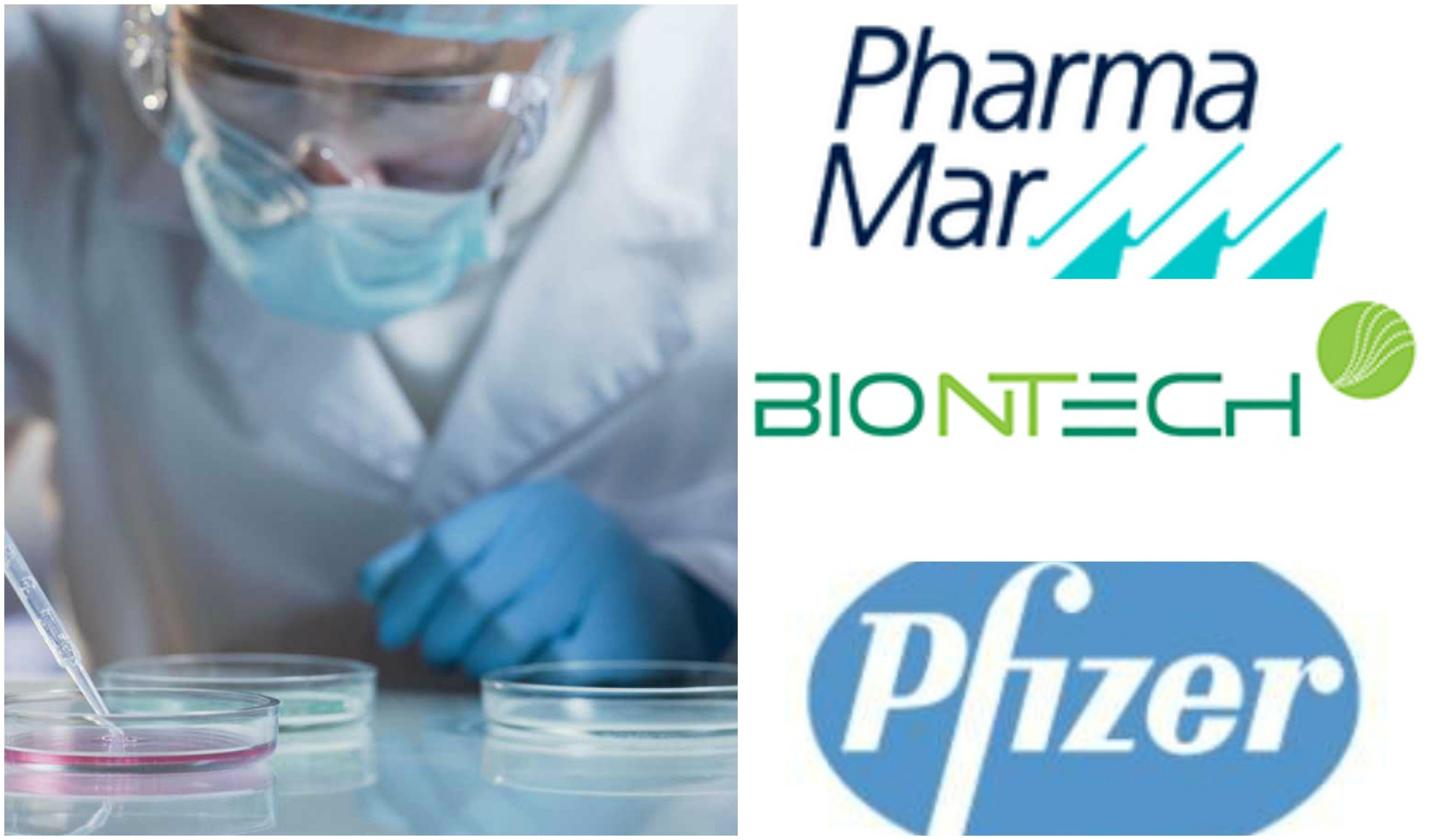 Pfizer y BioNTech, PharmaMar, el CSIC, estudios internacionales…: carrera en busca de una vacuna contra el COVID-19