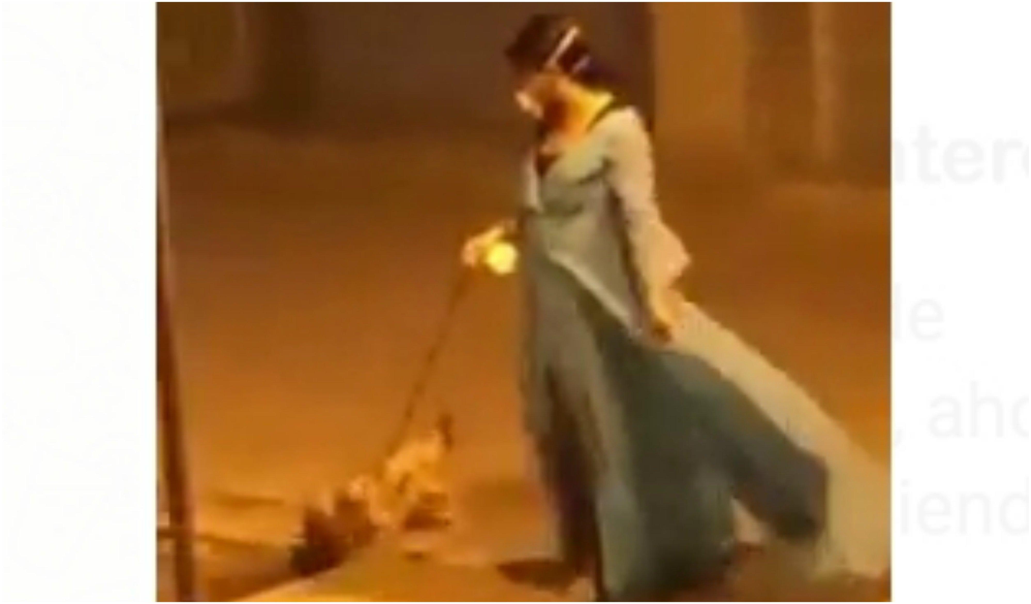 Memes. Escenas del coronavirus: 'Frozen' pasea a su perro