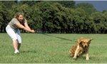 Personalizar al perro: los chuchos también sufren la edad del pavo según la muy científica revista 'Science'