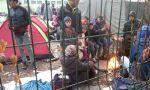 Demagogia con los refugiados: en Europa no hay campos de concentración