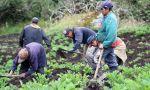 Colombia. El otro gran problema de Santos: la mitad de la población rural es pobre