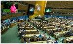 Naciones Unidas aprueba la resolución española 'Mujeres, niñas y Covid-19': el sanchismo expande la necedad por el mundo