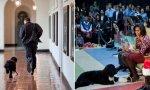 Los Obama lloran la muerte de su perro Bo, pero no la de millones de niños por culpa del aborto: defienden el derecho al aborto