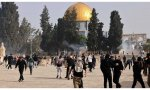 Enfrentamiento Israel Palestina