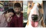 """Nikky y Dan Phillippi con su perro Bowser al que """"dejaron ir pacíficamente"""""""