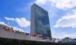 La ONU tiene un enjambre de supuestos expertos..., que cobran muy bien