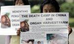 Los chinos persiguen a las minorías mediante la extracción de sus órganos