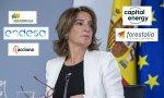 Teresa Ribera recibe plantón de varias grandes eléctricas en la nueva subasta de renovables, pese a las reuniones con sus responsables y al anuncio de posteriores modificaciones del decretazo
