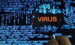 En el principio fue el virus… y los expertos mentecatos
